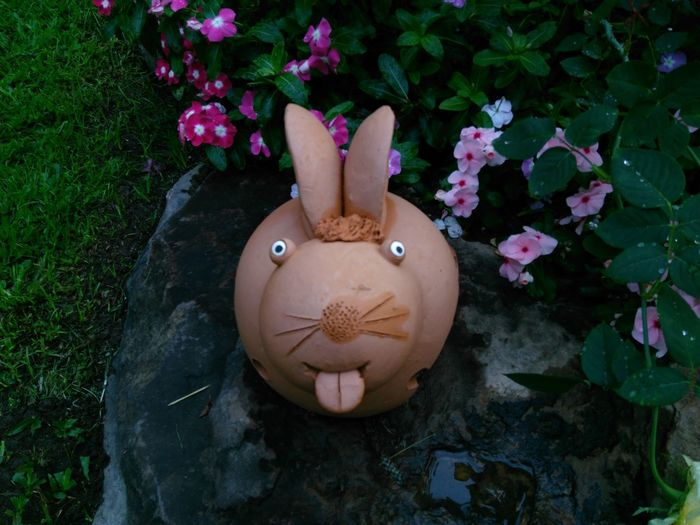 Rabbit Soil Pot