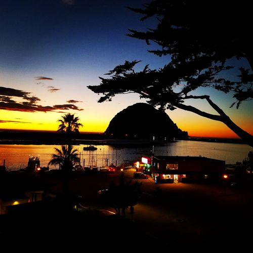 Cold California evening Sunset Beauty In Nature Outdoors California Coast Morro Bay Sea Pacific Ocean Tree Water Reflection Scenics Nautical Vessel Nature Tranquility Transportation Palm Tree Silhouette Sky No People Night