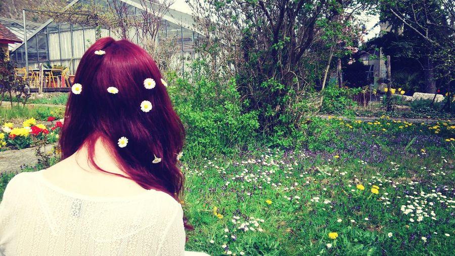 Daisy Red Hair Garden Enjoying Life