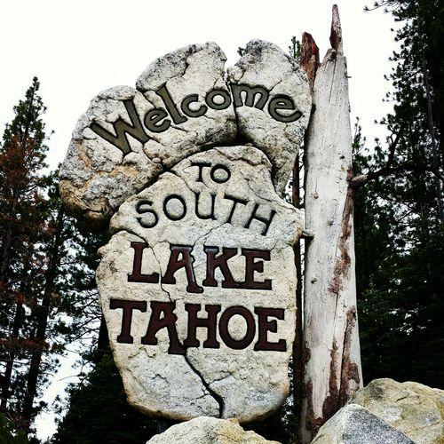 ahhh. ..fresh air! California Lake Tahoe Tadaa Community Happy People Taking Photos Open Ediit Hello World Mountains Chosen Paths Check This Out