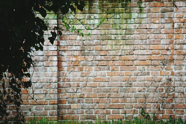 the wall Wall