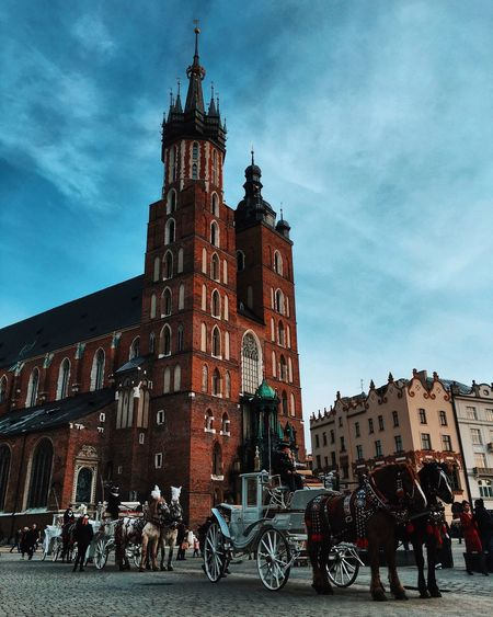 Horses Poland Architecture Building Exterior Built Structure City Clock Tower Cloud - Sky Cracow Day Horse Krakow Large Group Of People Low Angle View Men Outdoors People Place Of Worship Real People Religion Sculpture Sky Spirituality Statue Women Stories From The City Adventures In The City Focus On The Story The Traveler - 2018 EyeEm Awards The Street Photographer - 2018 EyeEm Awards The Architect - 2018 EyeEm Awards