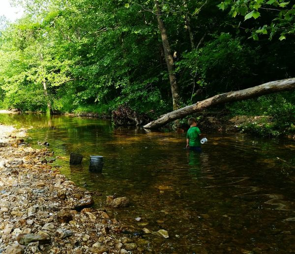 Missouri Ozarks, USA 💥💖 💯 Country Life Summer Time  Fun Water Preschooler Creek Family 🙏🙌 👫 Grandkids 💙💛💜 Water Tree Rippled Calm Fishing Equipment Countryside
