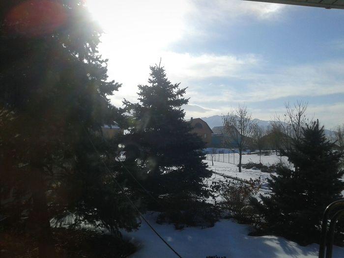Winter. Kazakhstan. Almaty City