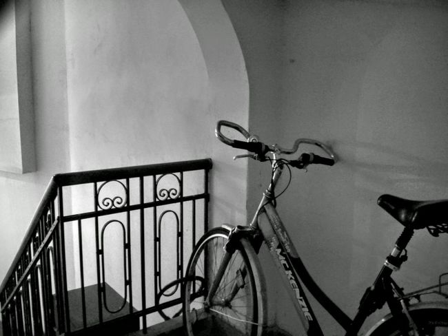 Monochrome Learn & Shoot: Balancing Elements Mckenzie Shades Of Grey Celebrate Your Ride Interior Views Black And White Black & White Black&white Stairs Bicycle Mobile Photography Smartphone Photography AMPt_community Shootermag Showcase March Vault Arch Architecture City Urban Sports Cope Light And Shadow Shadows & Lights EyeEmNewHere Lieblingsteil Let's Go. Together.