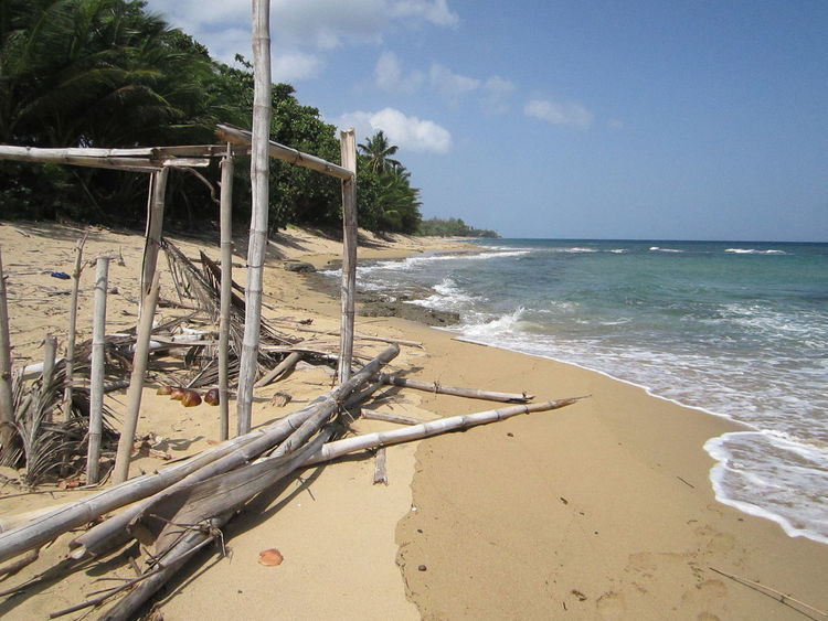 Abandoned hut on the beach. Ruins Abandoned Beach Beach Hut Beauty In Nature Carribean Day Desert Beach Deserted Beach Drift Wood On Beach Drift Wood Structure Horizon Over Water In The Surf Island Nature No People Outdoors Sand Scenics Sea Sky Tree Water