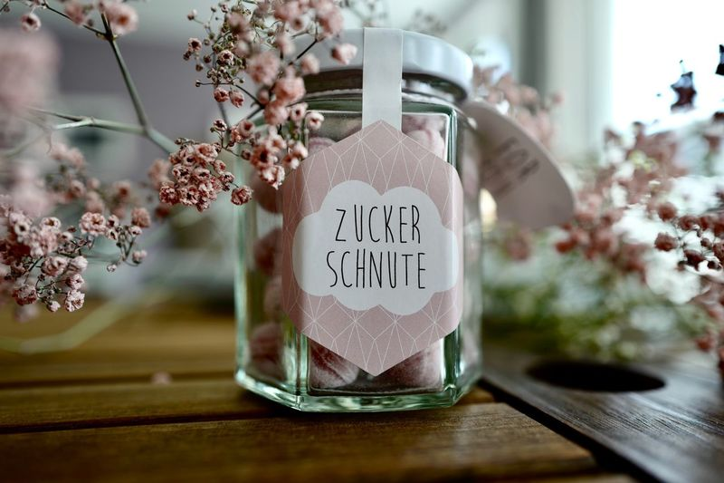 Sweets Text Flower Plant Western Script Flowering Plant Vase Indoors  Glass - Material Freshness Table Container Nature