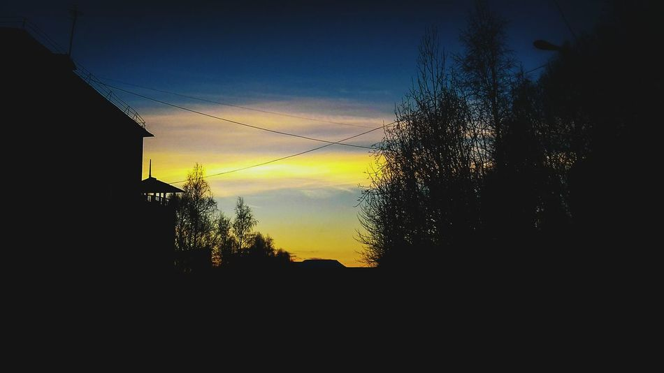 Tree Sky Nature Beauty In Nature Outdoors Sunset No People