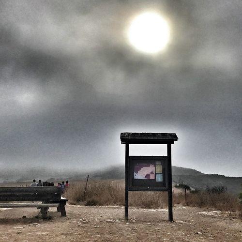 Sun breaking through fog during running race! Fog Foggy Mist Nature Marine Layer Sunlight Sky And Fog Running Santa Monica Mountains Nature Photography AI Now AI Now AI Now AI Now