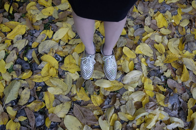 Adult Autumn Body Part Change Day Human Body Part Human Foot Human Leg Human Limb Leaf Leaves Leisure Activity Lifestyles Low Section One Person Outdoors Plant Part Real People Shoe Standing Women Yellow