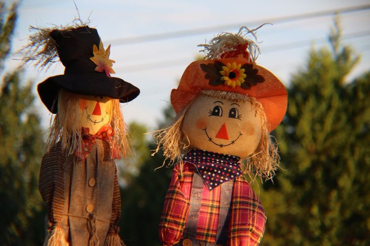 Close-up of scarecrows against sky