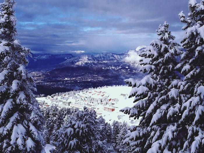 Cold Temperature Tranquility Landscape Tree Weather Winter Snow Nature Beauty In Nature Mountain Outdoors
