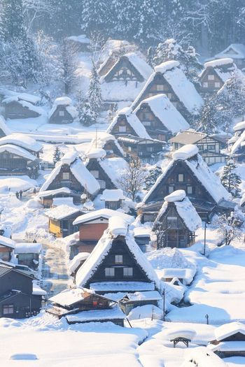 日本 日本旅行 Shirakawago Japan House Snow Cold Temperature Snowflake City Winter Sea Backgrounds Cityscape Aerial View Ice Snowfall Snowing Weather Condition Snowcapped Mountain Deep Snow Snowcapped Frost