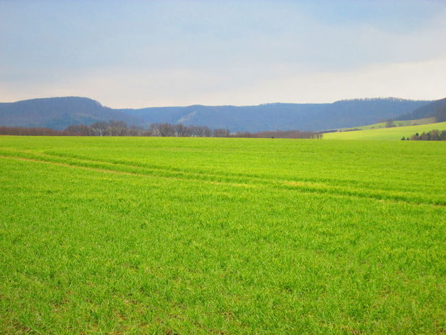 Eichsfeld Campos Ershausen Field Landscape Naturaleza Nature No People Outdoors Sky