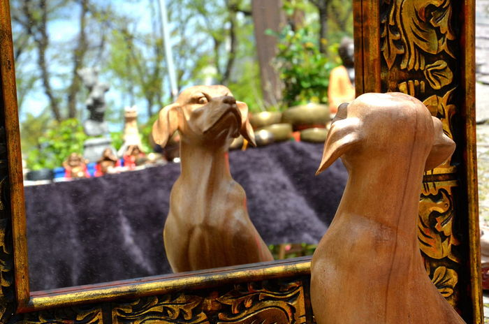 Spiegelbild Hund Mirrow Doubel Mirrow Efect Dogslife Dog Holz Kunst Streer Art Streetart Wood - Material WoodDog Flea Markets Fleamarket