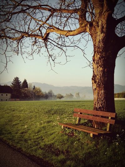 Österreich Oberösterreich Chill Beauty In Nature Landscape Tree Outdoors No People Beautiful Silence Peace And Quiet Peaceful Peaceful View Neighborhood Map Wartberg Done That.