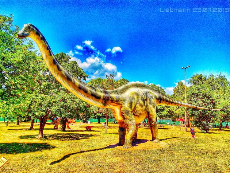 DinoPark Nature Ungarn Traveling Landscape Hdr_Collection