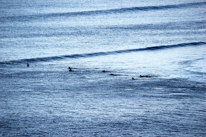 """""""Surfers at Bells Beach in Victoria"""" Australia Beauty In Nature Bells Beach Blue Coast High Angle View Ocean Outdoors Paddling Point Break Rippled Sea Seascape Sport Surf Surfers Surfing Tranquil Scene Tranquility Victoria A Bird's Eye View Waves Waves, Ocean, Nature"""