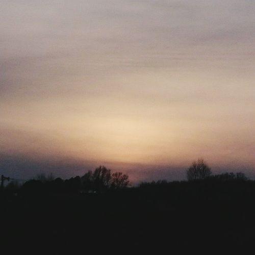 北海道勇払郡安平町 安平町追分地区 散歩道 夕焼け 初冬 寒いわ 御近所さん 広大な土地