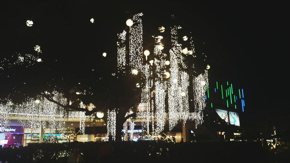 CountdownToChristmas Christmas Time Christmas Lights Delightful Street 💫 Check This Out EyeEm