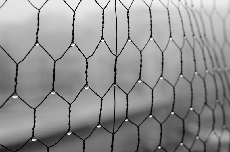 Close-up of field seen through chainlink fence