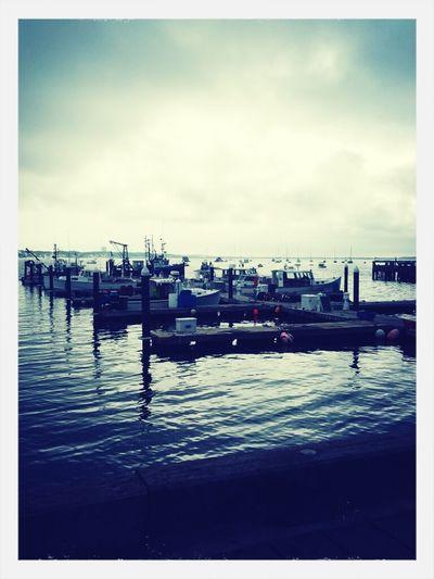 Provincetown Harbor #august