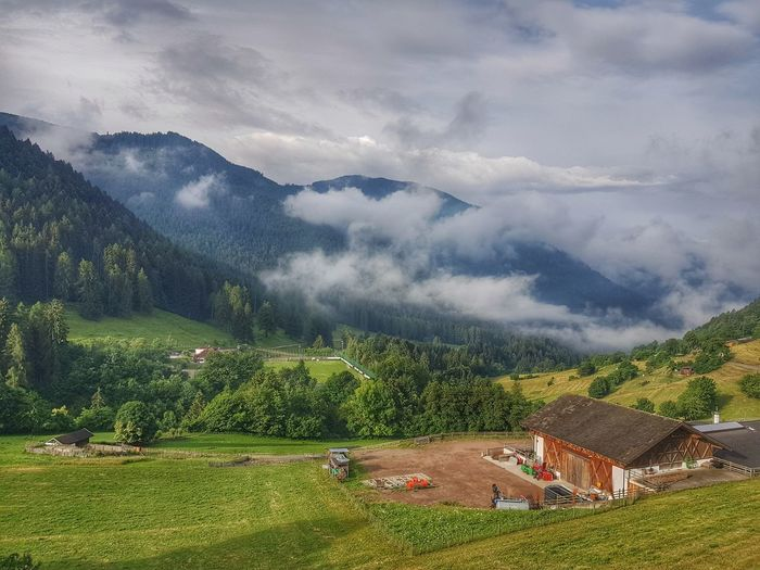 2.Tag Motorradwoche Juni 2018 South Tyrol Truden Landscape_Collection Landscape_photography Sky And Clouds EyeEm Nature Lover Smartphonephotography Samsung Note 8 HDR Collection HDR Nature_collection Nature_collection Südtirol Tree Mountain Tea Crop Agriculture Rural Scene Water Beauty Field Sky Landscape The Great Outdoors - 2018 EyeEm Awards The Traveler - 2018 EyeEm Awards