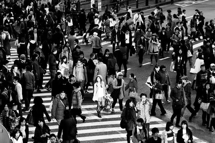 Shibuya cross.