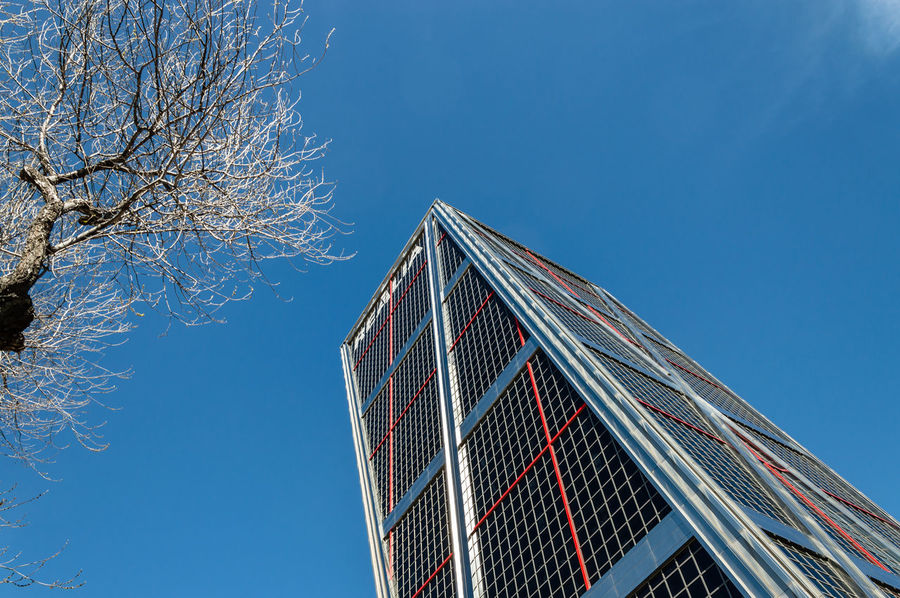 Leaning towers office building in Madrid against blue sky Business Financial District  Kio Madrid Modern Architecture SPAIN Architecture Blue Blue Sky Branch Building Exterior Built Structure City Clear Sky Day Downtown District Landmark Leaning Leaning Tower Low Angle View Modern No People Office Building Office Building Exterior Outdoors Sky Skyscraper Tower Tree