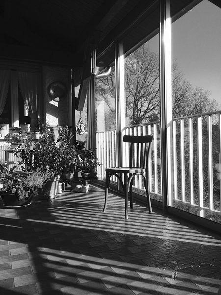 Light Tranquil Scene Blackandwhite Shadow Eye4photography  EyeEm Gallery Plants Showcase: February