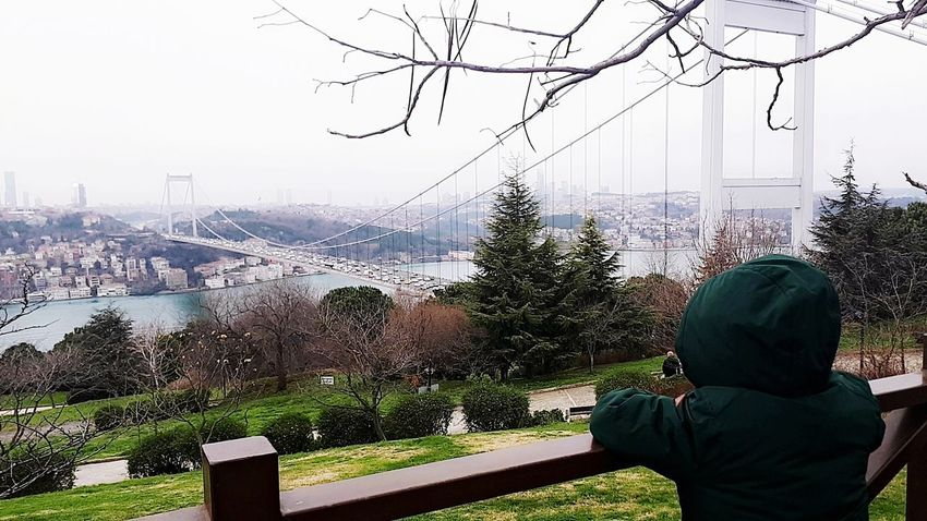 #istanbul #son #gold #holiday #fatih #green #withers Rear View Water One Person People Day Real People Men Sky City One Man Only Tree Only Men Outdoors