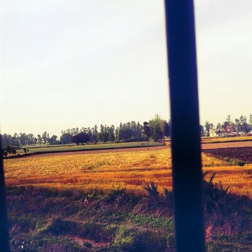 RaviMrons_Photography click bye Me_while_travelling_in_train