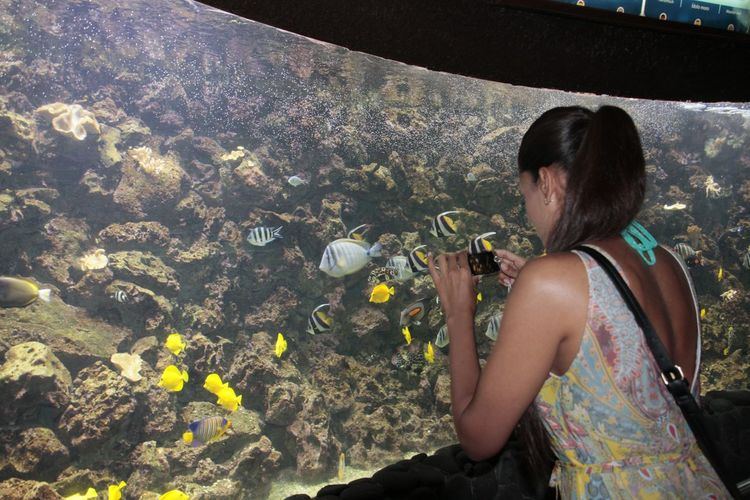 Woman photographing fishes in aquarium from mobile phone