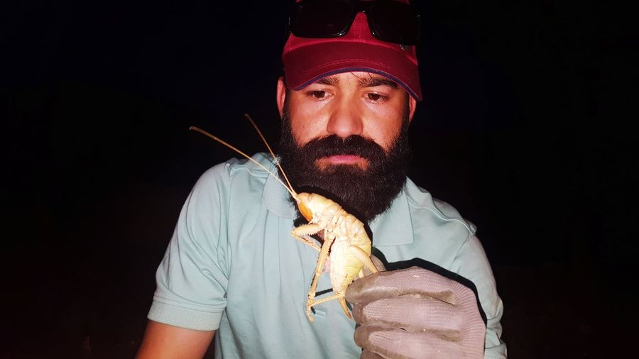 Low angle view of mid adult man holding giant grasshopper against sky at night