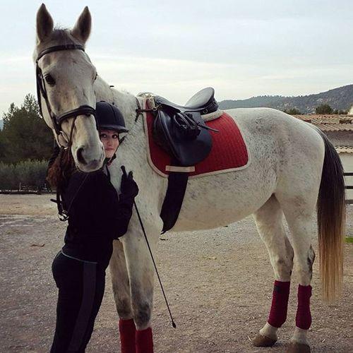 Horsestagram Horserider Hug Tarantino Horselovers Horseadict Instahorse Horsegirl Loveyou Beauty BIG White Red Tagsforlikes Follow Equinelife Equestrianlife