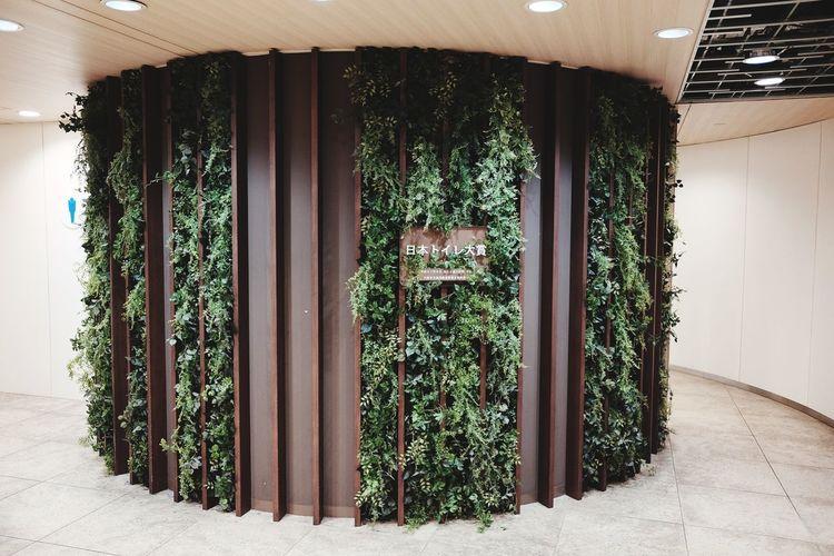😳😳😳 Window Door Architecture Built Structure