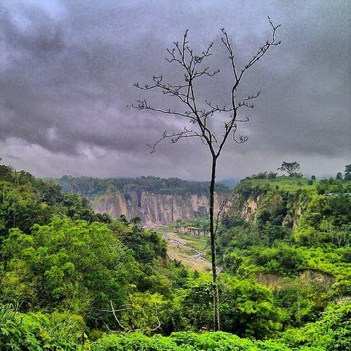 Still at Ngarai_sianok Bukittinggi West_Sumatra Sumatera_Barat an amazing place in Indonesia joininstanusantara instanusantara instanusantaraNature instanusantaraLandscape photooftheday