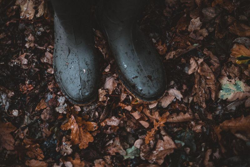 Wet wellington boots in autumn Wellies  Wellington Boots Boots On The Ground Autumn Leaves Autumn colors