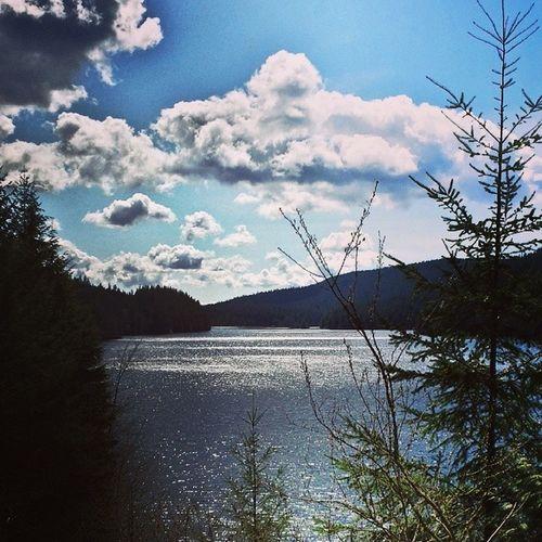 14km hike around Buntzen Lake. Buntzenlake
