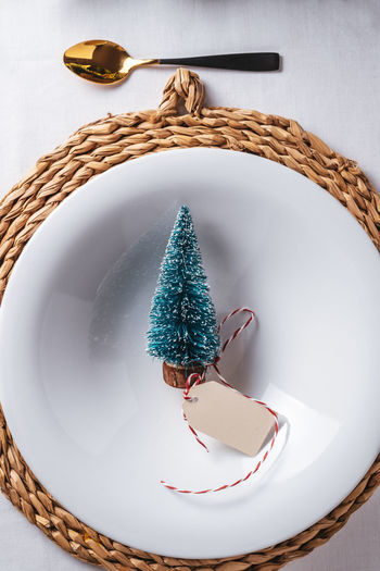 Directly above shot of christmas tree in bowl on table