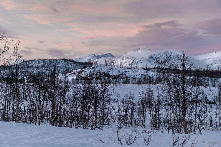 winter wonderland Polarnight Tromsø Norway Betterlandscapes Landscape_Collection Landscape Landscape_photography EyeEm Selects EyeEmNewHere Travel Travel Photography Nature_collection Nature Photography Sony A6000 Snow Mountain Cold Temperature Cloud - Sky Sunset Winter Nature Beauty In Nature Snowcapped Mountain Sky Mountain Range Landscape Scenics Outdoors Day Shades Of Winter
