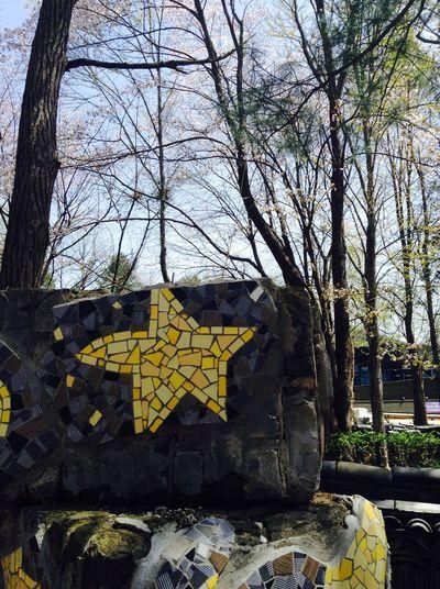 Yellow Star Nami Island