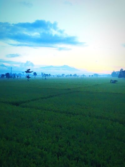 Sunrise at by pass Lombok