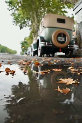Water Reflection Outdoors No People Puddle Day Nature Vintage Vintage Cars City Life 1930s 1930 Vehicles Chevrolet Buenos Aires Nikon City Old-fashioned Transportation Travel Destinations