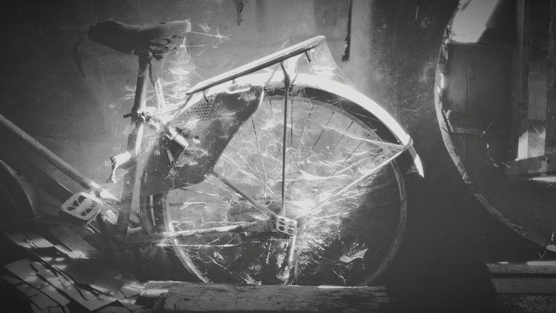 Spiderwebs Spiderweb Collection Bycicle Old Bycicle Photography Bycicle Art Myanmarstreetphotography Myanmartrip Myanmar Yangon, Myanmar Yangonlife Yangon Travelasia Backpacker Black And White Photography Blackandwhite Grey Oldschool Vintagecollection Vintage EyEmNewHere Oldbycicle Traveltheworld Pictureoftheday Peoples Life