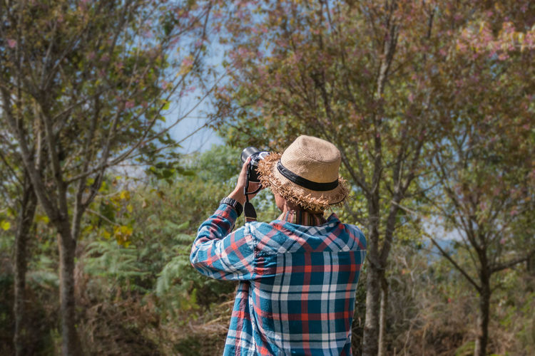 Man photographing trees in forest