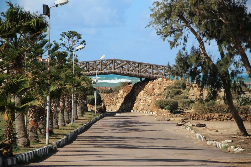 Bridge amidst trees against sky