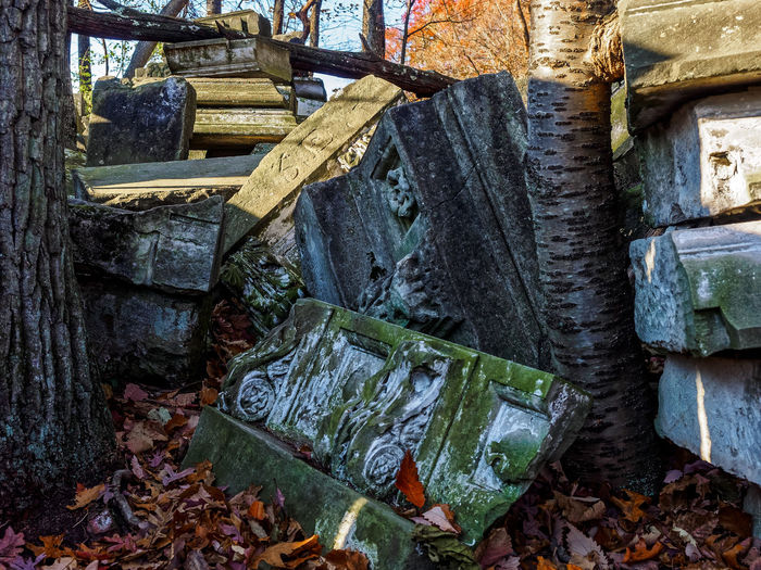 Architecture Capital Cities  Day Decay Fall Fallen Large Group Of Objects Leaves Moss No People Outdoors Rock Creek Park Ruins Stack Stones Trees Washington, D. C.