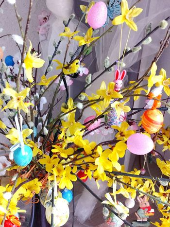 Easter Still Life Seasonal Photography Pastel Colours Bold Neons, Bright Pastels Beautiful Colours Easter Arrangement Easter Bunch Easter Decoration Flower Arrangement Easter Egg Easter Flowers Ladyphotographerofthemonth Colour Splash Colourful Easter Is Coming Soon Easter Is Approaching Easter Is Around The Corner Interior Views Easter Ready Here Belongs To Me