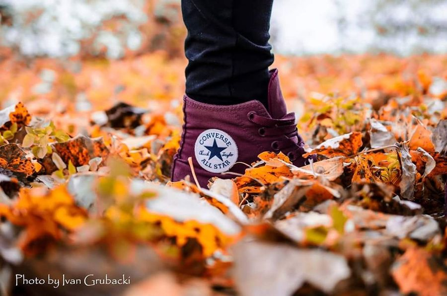 Autumn Leaf Outdoors Nature Low Section Human Body Part